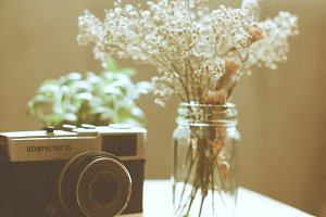 Old camera with flower