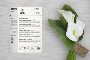 Resume Template-V041