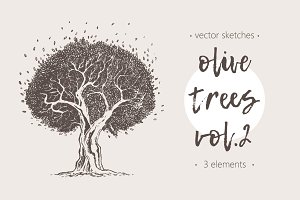 Set of illustrations of olive trees