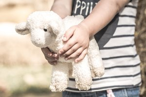 little girl holding a toy sheep
