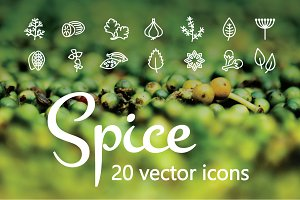 SPICE - vector line icons
