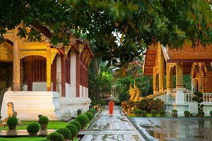 Monk in the temple, Thailand
