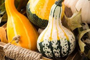 Autumn thanksgiving composition