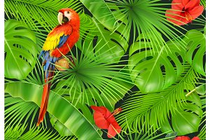 Jungle leaves and parrot. Vector