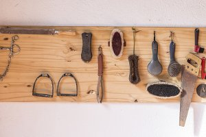 Tools for horse care