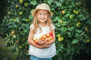 Little girl in the apple garden
