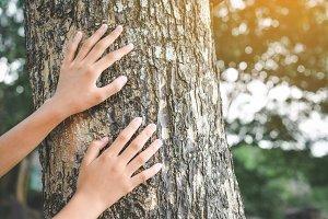 Girl and big tree