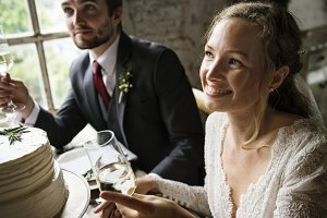 Bride and Groom Cling Wineglasses