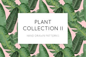 A Plant Collection II