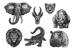 Wild animals vector sketch icons for African zoo