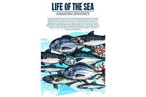 Vector poster of sea fish sketch ocean fishes life