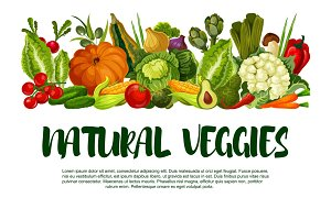 Vector poster of vegetables or veggies harvest