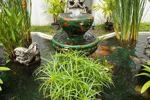 Pond in the garden.