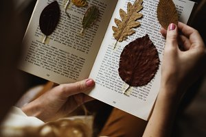 Dried leaves on a book