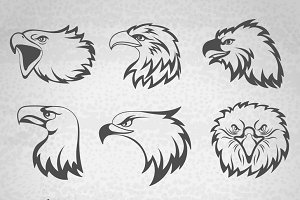 Falcon or eagle head mascot set