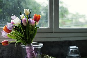 Fresh Tulips Flowers Arrangement