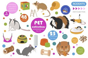 Pet Rodents illustrations set