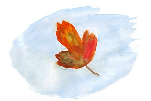 Watercolor autumn leaf on blue background