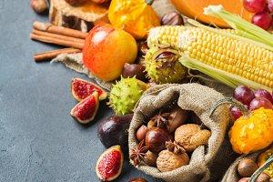 Fall autumn harvest thanksgiving background with pumpkin apple chestnut corn