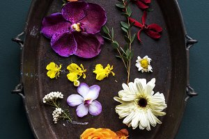 Flowers in a tub