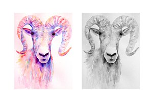 Watercolor Ram Art Print