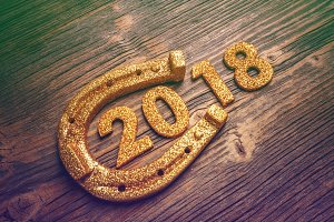 2018 symbol of New Year
