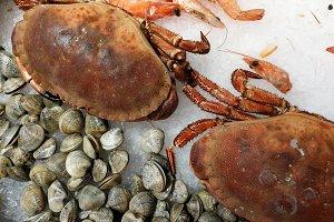 Crabs on ice at market