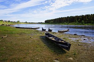 Moored to the shore near the village of long classic wooden boats of the Siberian Mansi people