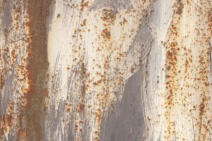 Rust Gray White Painted Wall Texture