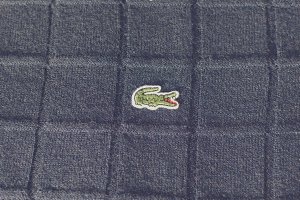 Embroidered crocodile