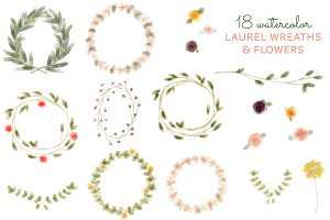 18 Watercolor Laurel Wreath & Flower