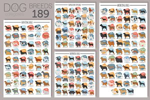 All dog breeds poster set