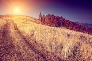 Fantastic sunny hills