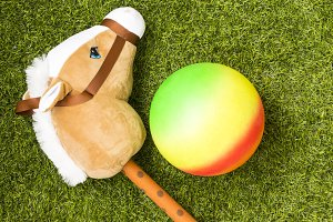 Toy horse and ball