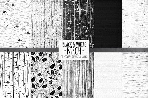 Birch Black & White Wood Background