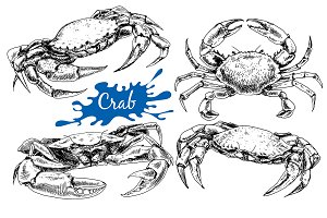 Crabs. Hand drawn ink set