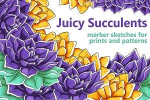 Juicy Succulents