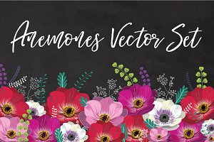 Anemones Floral Vector Set
