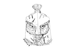 Horned Owl Spartan Helmet Drawing