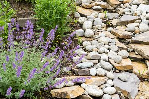 Garden water course with rocks