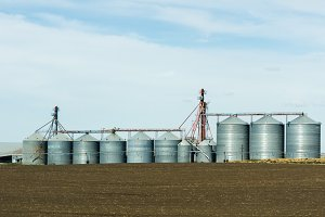 Steel grain storage silos