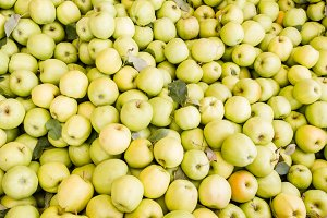 Golden apples at the market