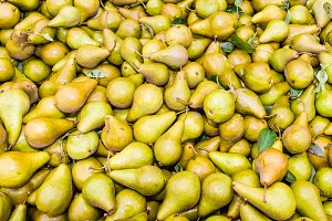 Bosc pears at the market