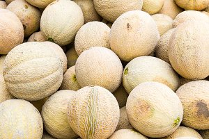 Cantaloupes at the market
