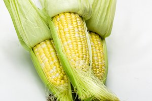 Sweet corn with husk pulled