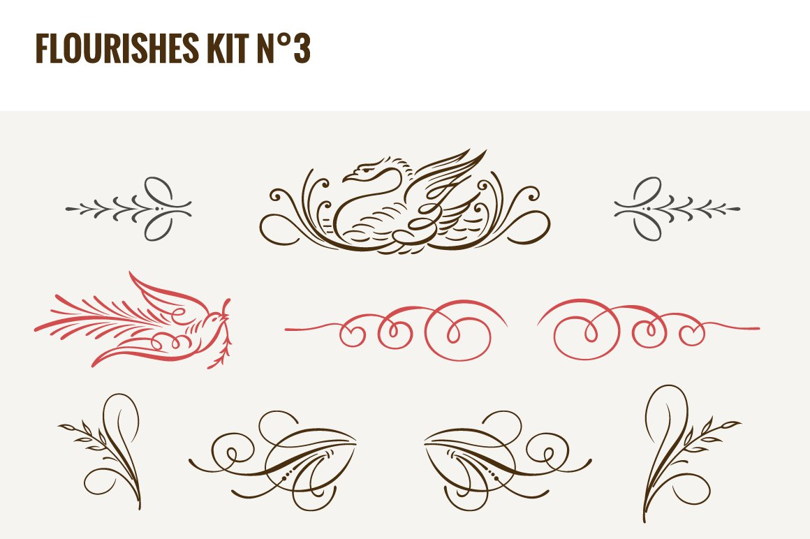 Flourishes Vector Kit N 3 Illustrations Creative Market