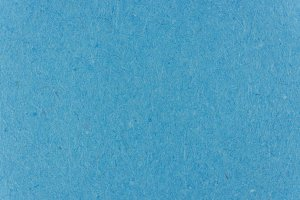Blue Jay Paper Background Texture