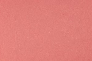 Coral Paper Background Texture