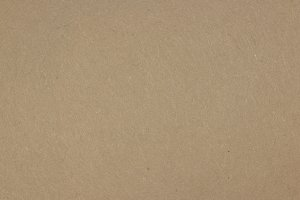 Studio Paper Background Texture