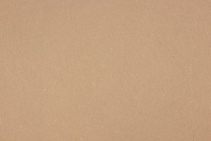Light Gray Paper Background Texture
